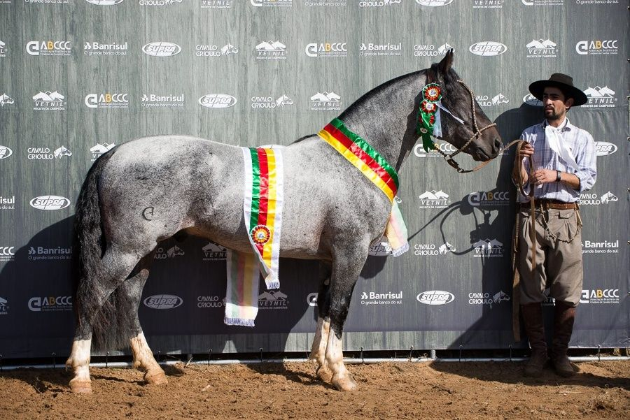Comanche da SGV