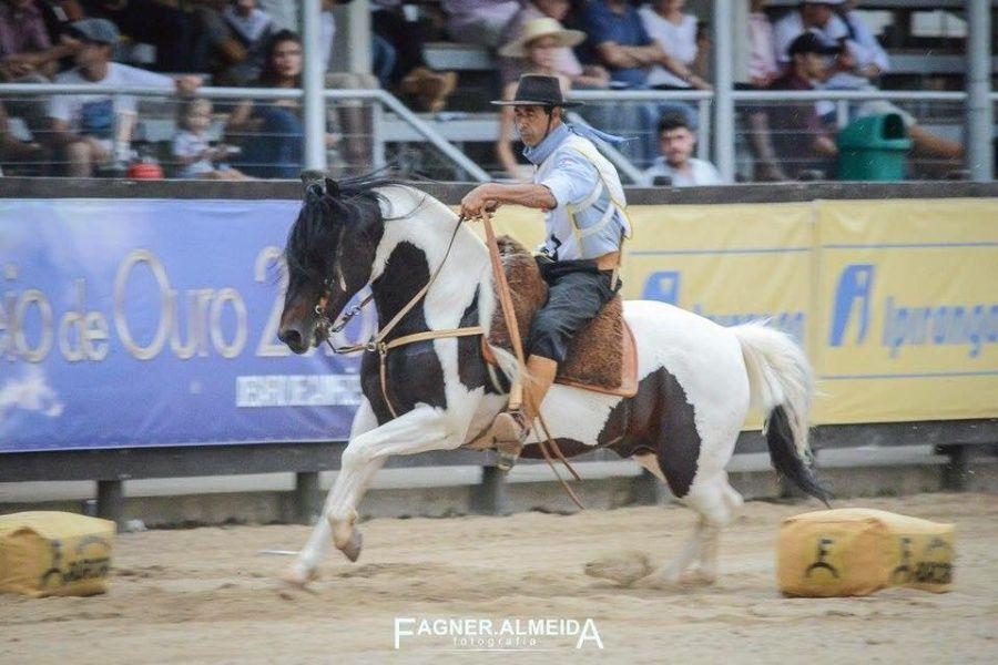 Volmir Santos